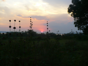 Sunset on Buvuma Island