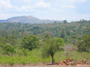 Looking East into Kenya from Mella