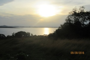 The view of Lake Victoria and surrounding islands from the Palm Resort Guesthouse on Buvuma Island.